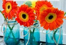 Mason Jars - Tin Cans - Glass / Anything DIY related to Mason Jars, Tin Cans and other glass objects.