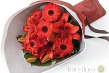 Gerberas / Gerberas come in a variety of vibrant colours.   Larger than daisies, smaller than sunflowers, and more beautiful (some say) than either, gerberas may well be selected by expert florists to enhance your gift.