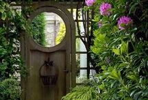 SECRET GARDEN / Hidden Gardens, Potting sheds, flora, trees, gates, flowers.