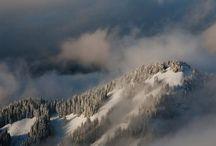 snowfalling [web reportages]