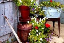 Flowers and gardens / love flowers and gardening