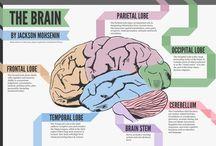 Brain / Colección de infografías, fotos, dibujos y demás contenido audiovisual sobre el Cerebro Humano. Incluye sus dolencias, trastornos y enfermedades mentales. / by Oswaldo Lechuga