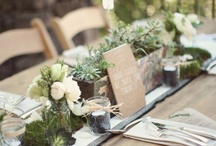 tablescapes / by Pia Baerg