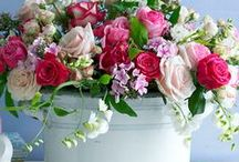 Floral Arranging, Advice, Tips & Ideas / Something about playing with beautiful flowers makes me smile! / by Meghan Wilson