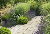 Garden (rooftop)