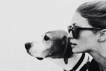 Dog LOVEr / by Jodea Johnson