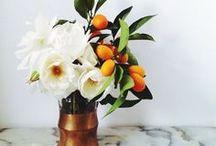 In Bloom / by Carolina Bevad