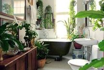 Jungalow / About creative reuse, personalization, vivid colors, bold patterns, worldly and thrifted finds, and lots and lots of plants -  Jungalow style is tropical and bohemian, very vintage and very cozy.