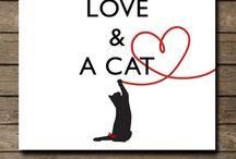 ♥ cats / by Janneke Maat