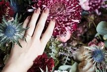 ° WEDDING °