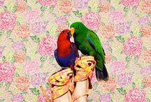 Tendencias 2012: Flores