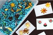 Sensory Table Fun / Hands on play ideas, sensory bins, recipes, and activities for using a sensory table in your classroom.