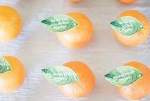 Orange Wedding / Wedding ideas in sweet, citrus inspired hues