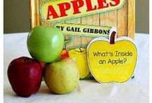 Apples / Apple theme unit ideas for your classroom. Hands on science, math, and language apple activities for your students.