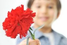 Acts of Kindness / Random acts of kindness ideas for students in the classroom or at home. Create an acts of kindness challenge in your classroom and help students learn gratitude.