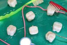 Dental Health / Teach students dental health with fun dental activities, printables, and dental videos for the classroom.