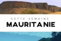 Francophonie et langue française / http://apprendre.tv5monde.com/ #francophonie #french #learnfrench #français #languefrançaise / by TV5MONDE