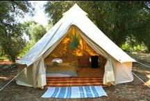 Tent Camping / by Tammy Augustine