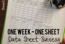 Data Systems for Special Ed & Autism / The key to a successful classroom is data! You will know how your child is progress and be able to see their progress. Learn all about how to create a data system that works for you!