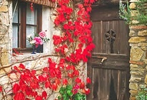 Doors gates and windows