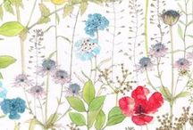 Liberty + NikeCourt / Botanical drawings for Liberty art fabrics designs; Irma, Josephine's Garden and Theodora, featured in Cinderella movie. Flowers of Liberty 'Theodora' product range and NikeCourt range inspired by Josephine Gomersall Botanical drawings.