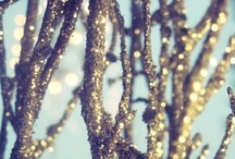 Christmas / by Brittney Werth