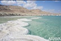 Our Home: The Dead Sea / The Dead Sea is our home at the lowest point on the Earth. It's a strikingly beautiful and peaceful place - a geological wonder filled with the kind of contrasts that only Mother Nature could create.