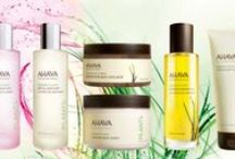 Dead Sea Plants / Extracts of plants that grow in the Dead Sea region contain exceptional properties that naturally hydrate, soothe and pamper skin