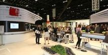 #Coverings2017: Snapshots / See what we were up to at the amazing 28th edition of Coverings - the largest tile and stone exhibition in North America - from April 4-7, 2017. #Coverings2017 #ItaliansMaketheDifference