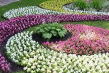 Craze for Gardening