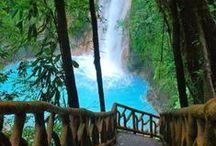 Global Natural Beauty