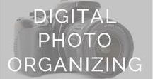 photo curation