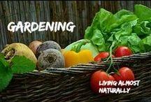 Garden- Tips and Tricks / Garden- Tips and Tricks