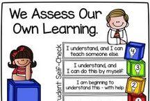 Feedback & Assessment