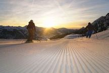 Ski Alpin / Egal auf welcher Piste man gerade ist, es macht immer Spaß