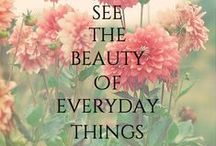 """Everything has beauty but not everyone see it."" / by Kayla Muldoon"