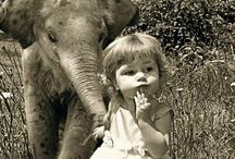 Elephant Love / by Carma Scott