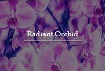 Radiant Orchid / Preserve the love in your relationship like a bunch of flawless orchids with a scintillating diamond ring from our extensive collection. For a decade now Fascinating Diamonds has been the reason behind ample of smiles and thousands of successful love stories ...For more information to style your Diamond Ring today, please feel free to call us on (212) 840-1811 or mail us atinfo@fascinatingdiamonds.com.