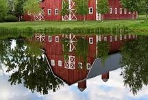 Barns / by Carla Frank