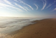 Beaches / Rent a home on Cape Cod, Nantucket or Martha's Vineyard and come explore our 600 miles of sandy coastline