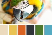 Combos de couleurs / by Marie-Josee Guerin
