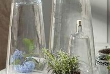 BOTTLES - JARS - DOMES... / by Tanja Mills Donaldson