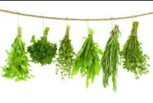 Herb Love - Recipes, Tips & Tricks / All kinds of tips & tricks about #herbs: #growing them, #cooking with them, #preserving them, and new ways of enjoying them in your home.