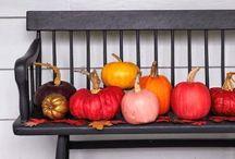 Holidays - Fall / by Erin Godbey