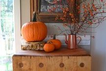 Fall / fall and autumn inspiration, decor, and entertaining