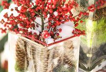 Holiday Spirit / by Savannah Hennig