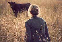 Animals=Love / by Colleen Kidder