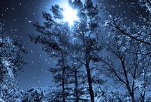 Winter, Snowflakes / by Laurierose Smith