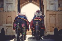 india bound / If You say go, I will go.  / by Lyric Floria