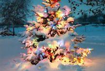 Christmas Love / by Vanessa